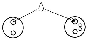 Рисунок 1 чудо-масло